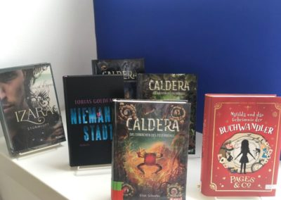 Auswahl von einigen Romanen